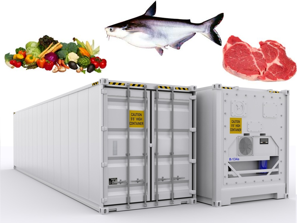 vận chuyển container lạnh