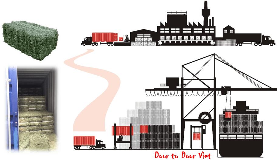 Thủ tục nhập khẩu thức ăn chăn nuôi